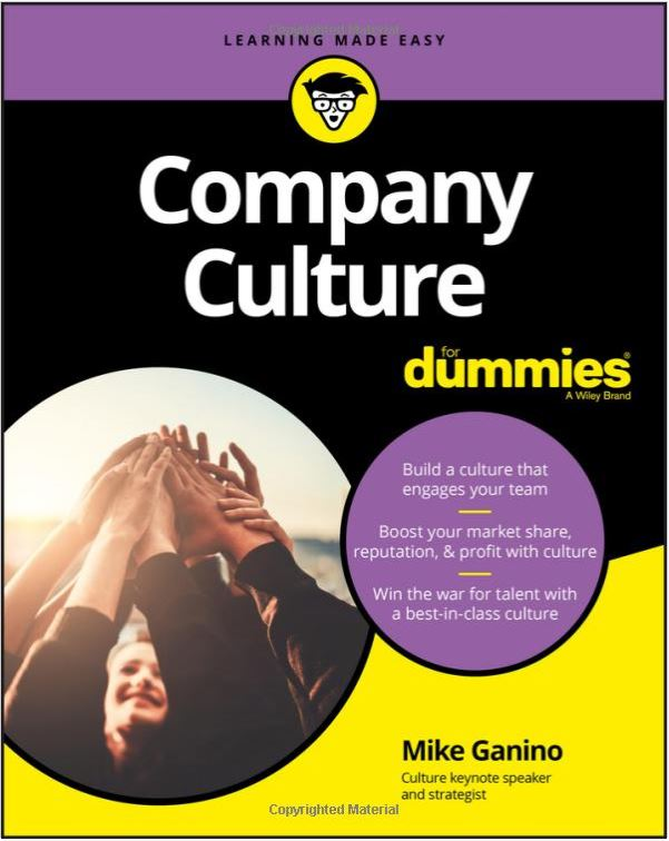 Company Culture for Dummies by Mike Ganino